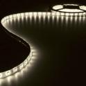 Bobine 5M LED SMD5050 12V IP65